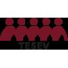 TESEV Yayinlari